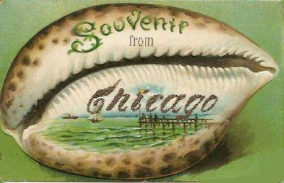 CHICAGO SEA SHELL CARD - c 1910